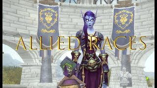 Battle of Azeroth Allied Races Character Creation - All options shown