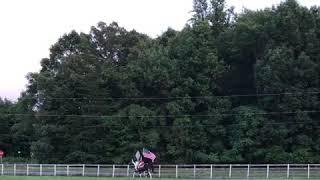 American flag, American girl, American Paint Horse