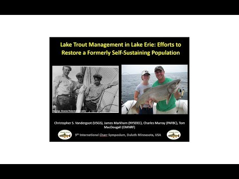 Lake Trout Management In Lake Erie: Efforts To Restore A Formerly Self Sustaining Population
