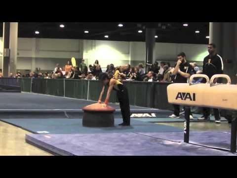 2014 Paws For A Cause Ajani Turner Level 6 Gymnastics