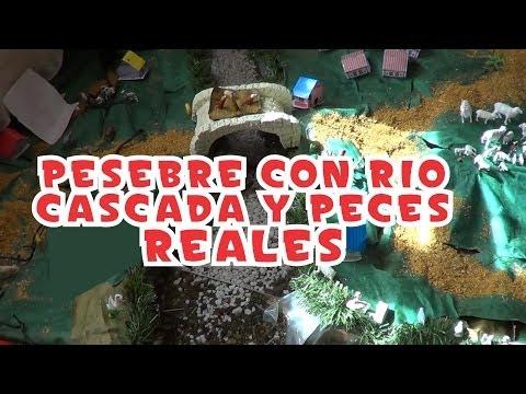 Pesebre con peces r o y cascada reales part 2 todoi for Cascada artificial casera