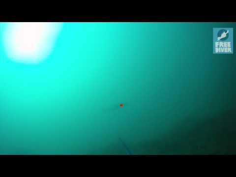 Spearfishing in Israel Vol 1 (Oceanmed & Freediver Corp).