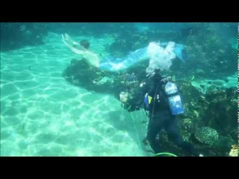 Mako mermaids season two update youtube for Mako mermaids dailymotion