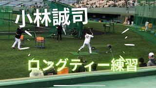 読売ジャイアンツの小林誠司選手のロングティーのシーンを撮ってみました。 #読売ジャイアンツ #ジャイアンツ #巨人 #小林誠司 #22 #捕手 #野球.