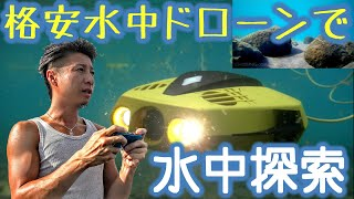 格安水中ドローンで水質日本一の支笏湖を水中探索!謎の群れに遭遇!【CHASING DORY 水中ドローン水中撮影】