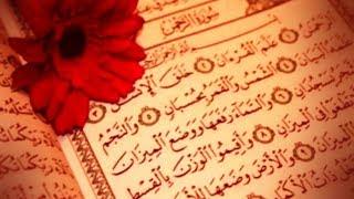 Her şeyin bir gözdesi vardır. Kur'an'ın gözdesi de Rahman Suresi'dir.((( Rahman Suresi )))