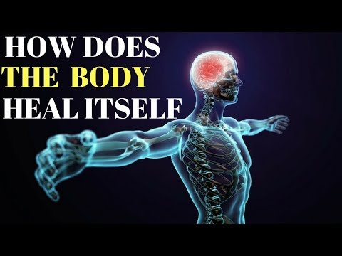 How Does The Body Heal Itself