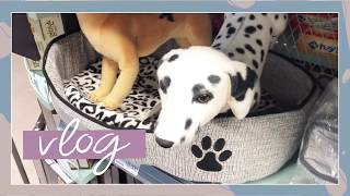 루나 브이로그 | 애견용품샵 원정대   | 강아지 간…