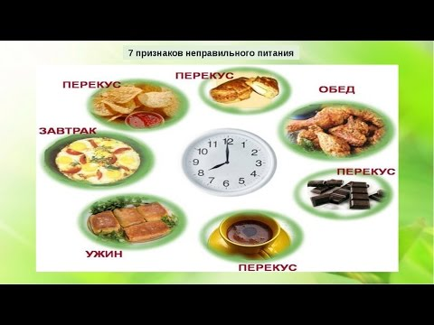 Система правильного питания  Отзыв