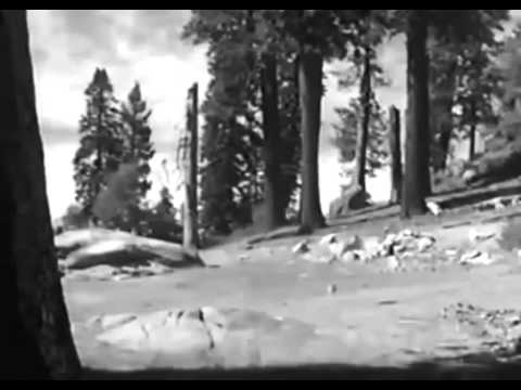 Western Movies - The Silver Whip (1953) Cowboy Movies