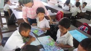 Grade 2 Pupil Led Reading