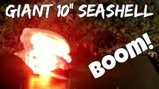 Giant seashell in slow motion!! (explosion & sledgehammer) | slow mo lab