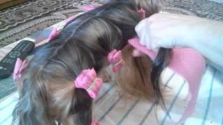 видео Папильотки для собак