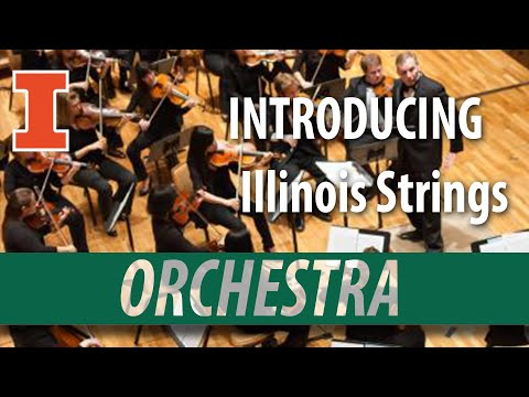 The University of Illinois String Division