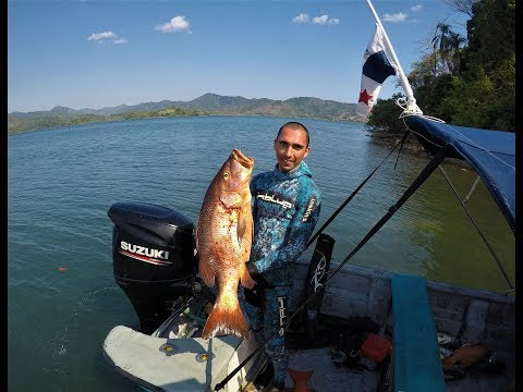 Spearfishing In Panama - Panamese Rhapsody