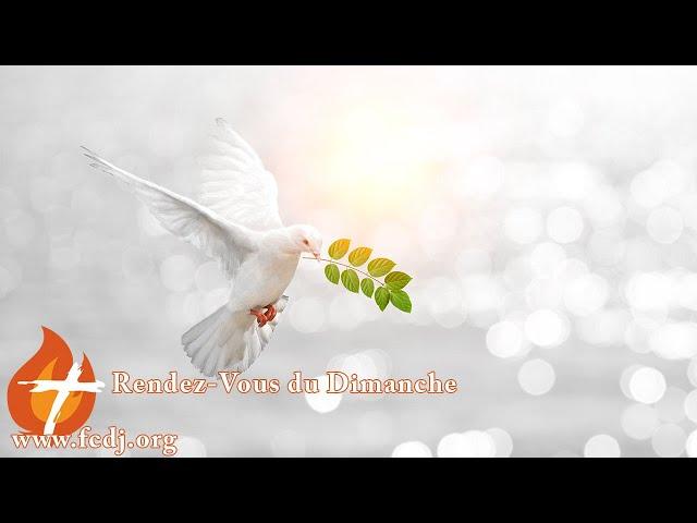 Se laisser conduire par l'Esprit Saint (13 décembre 2020)