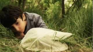 Social short film By Zareh Safaryan