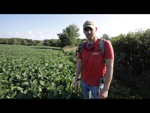 HUNTING FARM TOUR - 162 Acres For Sale In Pike County, IL