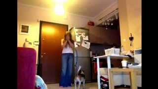 Video 1  Service Dog Training (behavior Interruption First Steps) Elena Palagka & Nina