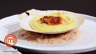 Live Scallops For 3 Stunning Dishes  MasterChef Canada  MasterChef World
