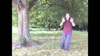 Tai Chi Qi Gong (chi kung) Demonstration, holistic healthful exercise for all abilities