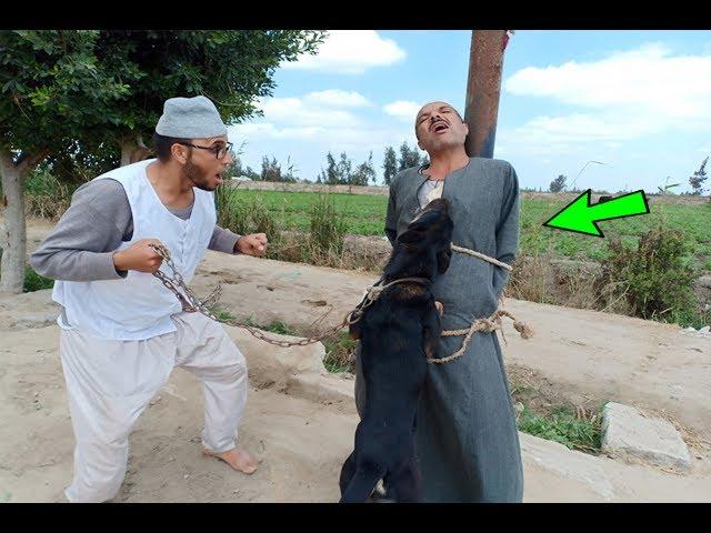 #24لن تتخيل مافعله الحاج مقطوش والكلب فى مصباح بسبب بنطلون شوقيه يفوتكم! أتحداك ان لا تضحك !!