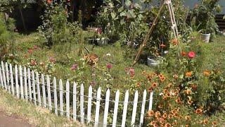 Cottage Living: Garden Vlog, Tropical Storm Thumbnail
