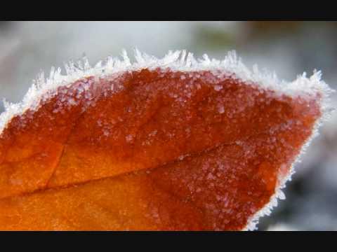 Нестандартный Вариант - Холод