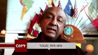 Reyot ርዮት : Interview With Professor Brook Hailu
