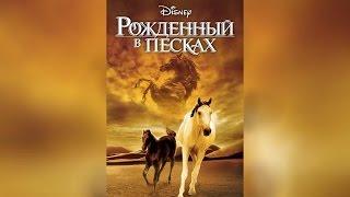 Рожденный в песках (2003)