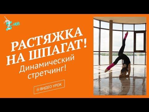 ШПАГАТВКАЙФ - дом растяжки и стретчинга в Москве