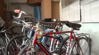 Biciclette Usate Pisa