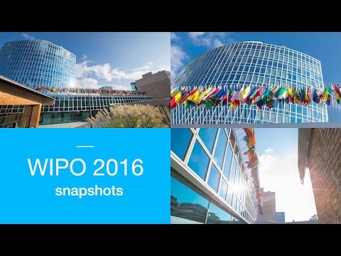 WIPO 2016: The Year in Images
