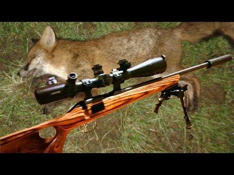 My Shooting Gear - Rifle CZ455 Thumbhole  22LR/ 17HMR