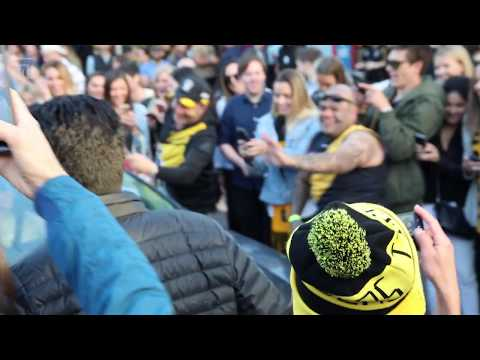 The Tiger Army celebrates Richmond's AFL premiership