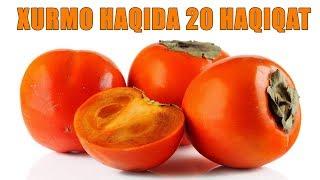 Хурмо Хакида 20 Хакикат !!!