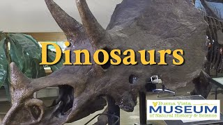 BVM Exhibits: Dinosaurs