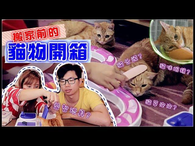 【魚乾】搬家前的貓物開箱!這是為了拍片不是亂花錢!嗯!