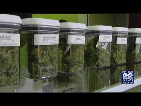 Massachusetts retail marijuana industry expected to grow rapidly