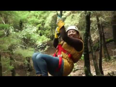 Forest Express Antigua Canopy Tours