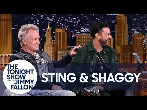 Sting Met Shaggy After He Wandered Onstage During