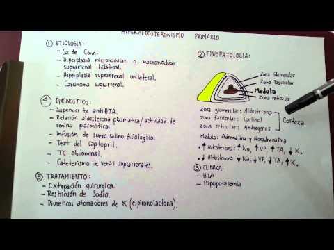 Hiperaldosteronismo primario- Síndrome de Conn