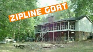 Zipline Goat