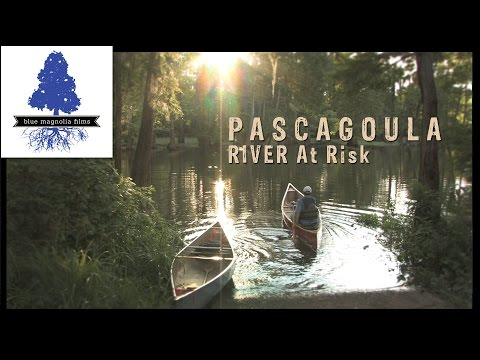 """River At Risk"" (Pascagoula, Mississippi)"