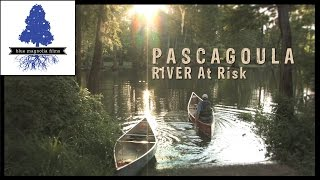 """Pascagoula - The Singing River"""