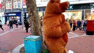 Giant fake bear 🐻 found in Reading City UK 🇬🇧