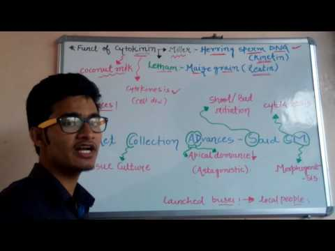 Trick to learn functions of CYTOKININS for all biology exams .