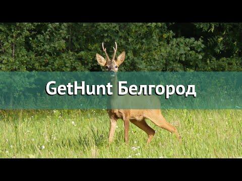 Охота в Белгородской области – GetHunt Белгород охота на Благородного оленя Европейского
