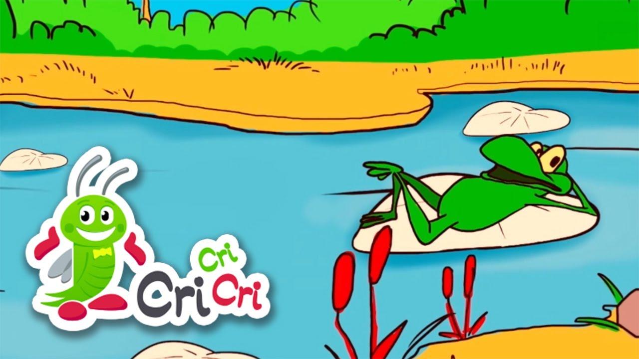 Oac, oac, diri-diri-dam   Mix cantece cu animale, pasari si insecte   CriCriCri #cantecepentrucopii