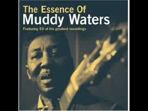 Muddy Waters - Trouble No More